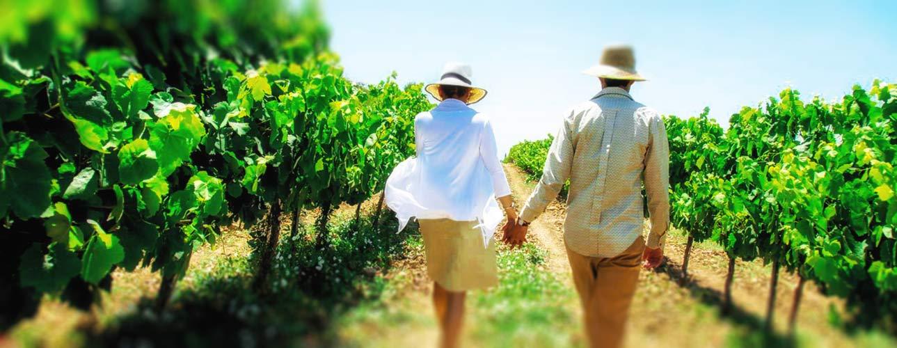 Paleros Travel - Agrotourism