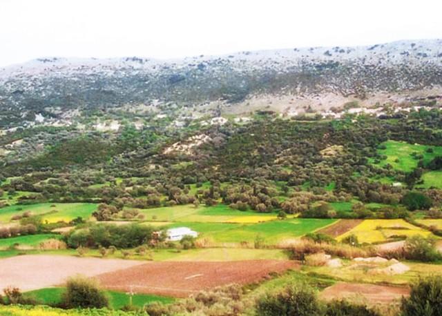 Paleros Travel - Agrotourism - Rural life in Paleros