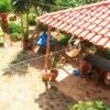 Paleros Travel – Accomodation – Apartments – Antonios