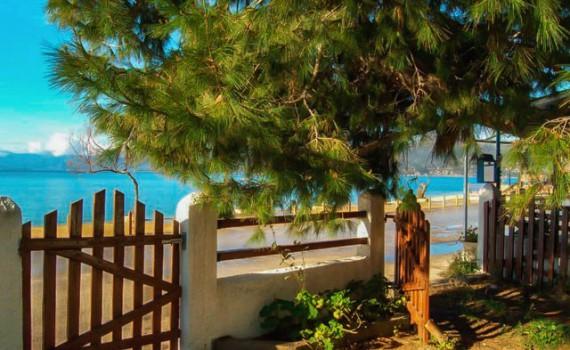 Paleros Travel - Accomodation - Apartments - Papadopoulos Villas