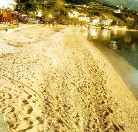 Pogonia beach